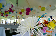 Party table with colourful balloons